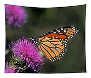 Monarch On Thistle 13f Tapestry