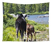 Moose Ends Baxter State Park Maine Tapestry