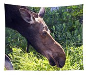 Moose Profile Tapestry