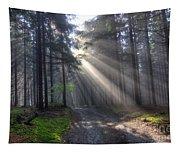 Morning Forest In Fog Tapestry