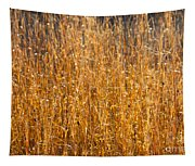 Morning Sunshine On The Marsh Tapestry