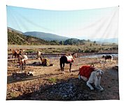 Moroccan Fauna Tapestry