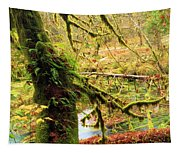 Mossy Bend Tapestry