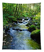 Mossy Rocks And Water   Tapestry