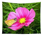 Moth On A Cosmos Tapestry