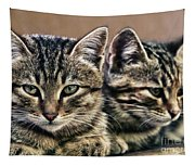 Mother And Child Wild Cats Tapestry