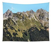 Mount Baker National Forest Tapestry