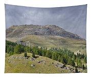 Mountain In St Moritz Tapestry