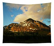 Mountain In The Morning Tapestry