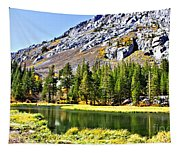 Mountain Pond Tapestry
