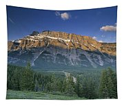 Mt Rundle And The Bow River Tapestry
