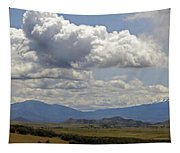 Mt Shasta On A Showery Spring Day Tapestry