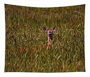 Mule Deer In Wheat Field, Saskatchewan Tapestry