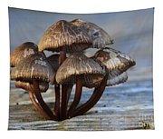 Mushroom Cluster Tapestry