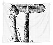 Mushroom: Parasol Agaric Tapestry