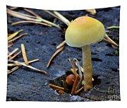 Mushrooms 1 Tapestry