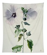 Musk Mallow Tapestry