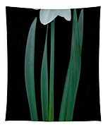 Narcissus Passionale Tapestry