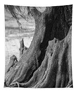Natural Cypress Tapestry