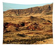 Naturally Painted Hills Tapestry