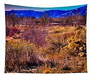 Nature At It's Best In South Platte Park Tapestry