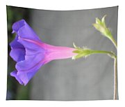 Nature's Trumpet Tapestry
