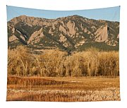 Ncar And Flatiron View Boulder Colorado   Tapestry