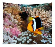 Turning Nemo Tapestry