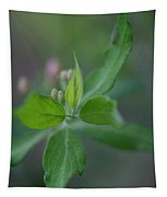 New Growth Tapestry