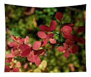 Northern Bilberry Tapestry