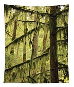 Northwest Mossy Tree Tapestry