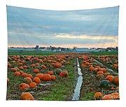 November Pumpkins Tapestry