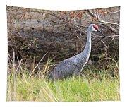 November Sandhill Crane Tapestry