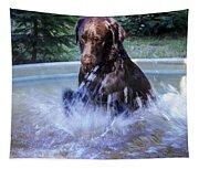 Nute Splashing Tapestry
