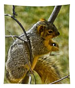 Nuts And Seeds Make A Great Lunch Tapestry