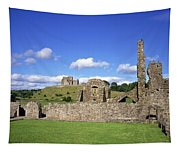 Old Ruins Of An Abbey With A Castle In Tapestry