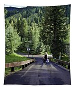 On A Country Road - Vail Tapestry