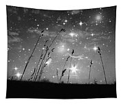 Only The Stars And Me Tapestry