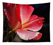 Open Rose After The Rain Tapestry