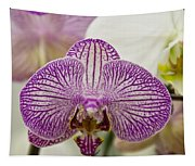Orchid Originality Tapestry