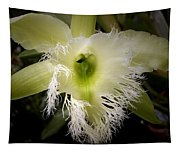 Orchid With Feathery Ends Tapestry