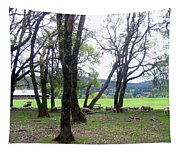 Oregon Sheep Farm Tapestry