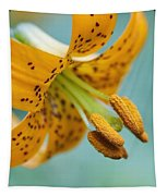 Oregon, United States Of America A Lily Tapestry