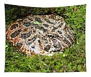 Ornate Horned Frog Tapestry