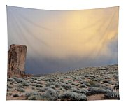 Over The Sagebrush Tapestry