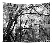 Pa. Country Stream Tapestry