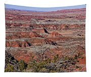 Painted Desert Tapestry