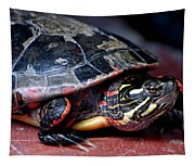Painted Turtle Michigan Tapestry