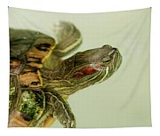 Painted Turtle Tapestry
