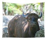 Pam The Bull Tapestry